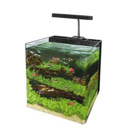 Aquariums & Accessories